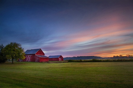 Two Red Barns