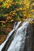 Fall Veil