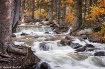 Colorado Falls