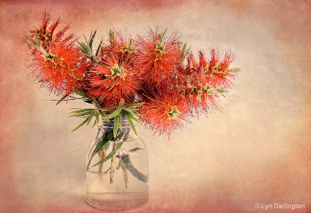 Bottle Brush.