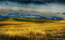 Prairie on the Blackfeet Reservation, Montana