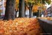 Fall season in Sa...
