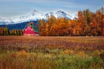 The Barn in Autumn