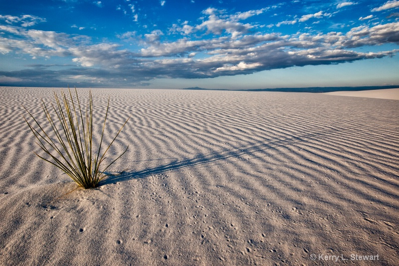 White Sands Shadows - ID: 14190632 © Kerry L. Stewart