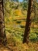 October Serenity ...