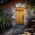 © Eric Reese PhotoID# 14197657: tadpole-vinyard