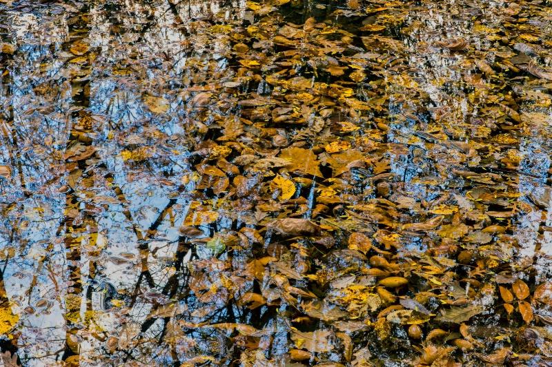 clogged... - ID: 14247900 © James R. Lipps