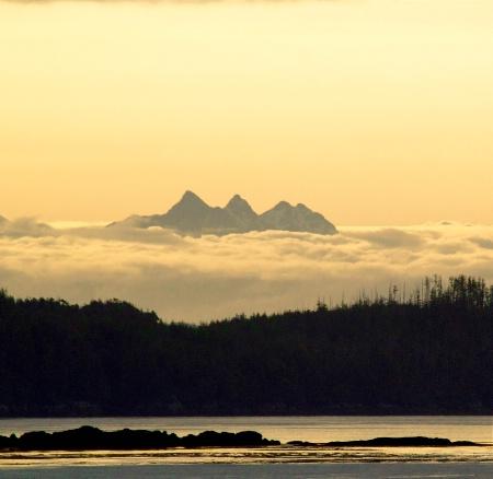 Alaskan Paradise!