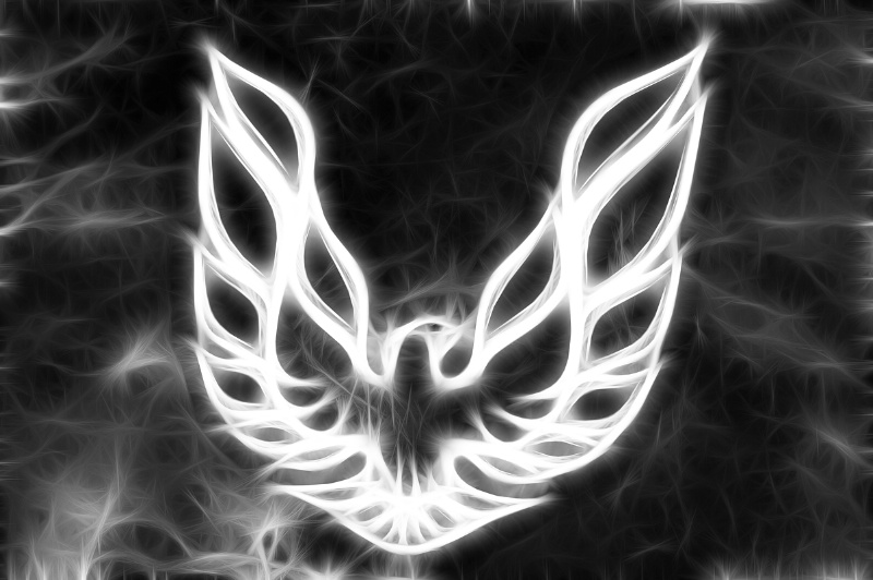 Firebird Emblem--Fractalius - ID: 14284510 © Don Johnson