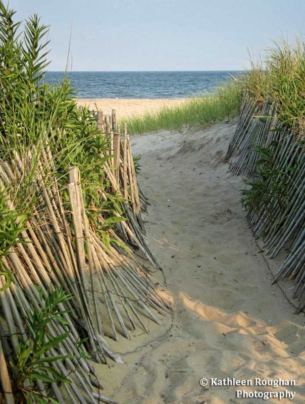 The Dunes - ID: 14295617 © Kathleen Roughan