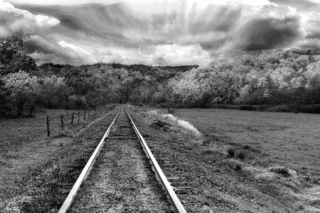 Long Twin Silver Lines (B&W)