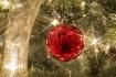 Christmas Greetin...