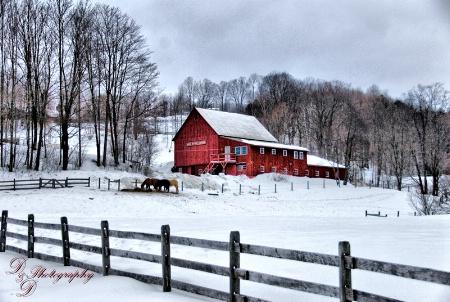 Snowtime in VT