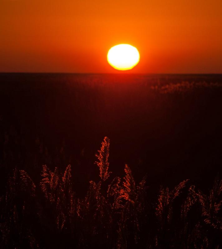 Sunrise at Bombay - ID: 14328444 © Thomas  A. Statas