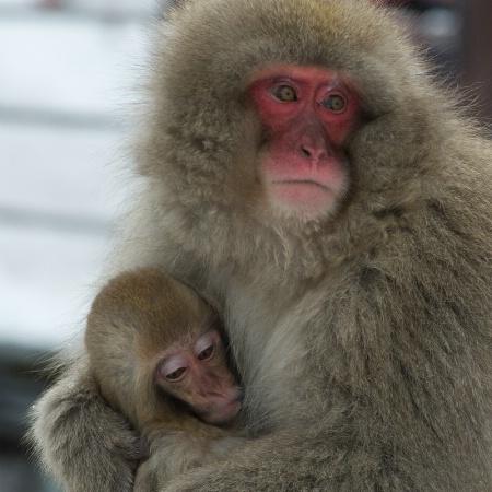 Mom Hugging Baby