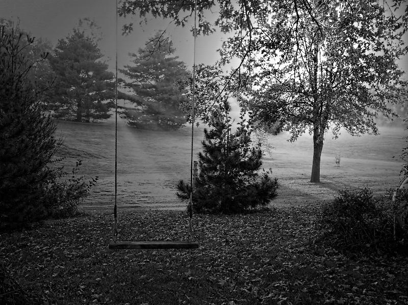 Back yard fall scene