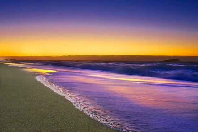 Purple Morn