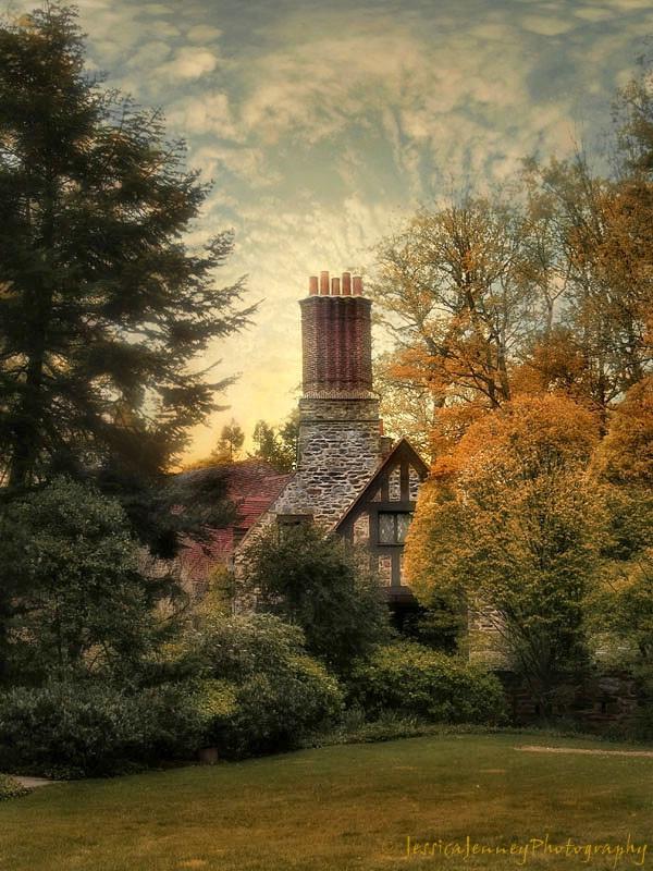 Autumn Tudor
