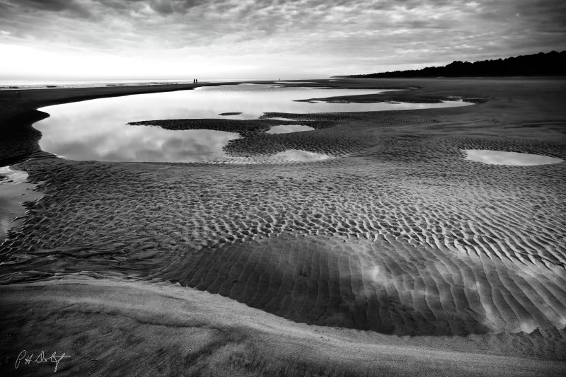 Textures of Low Tide