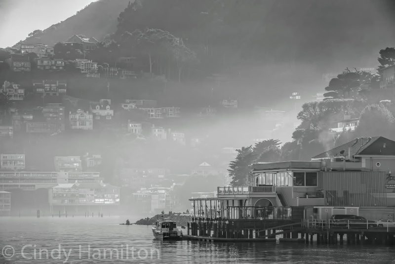 Sausalito in the Fog