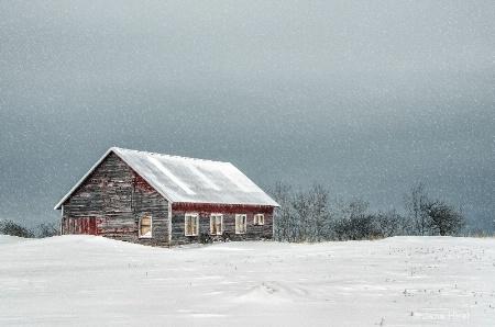 Cabin in Snowstorm 1