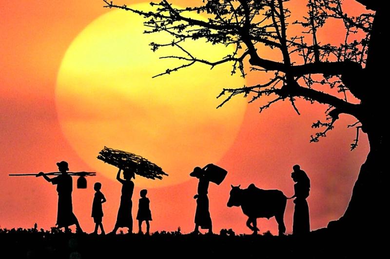 Sunset of Family