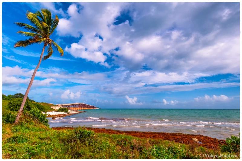 Florida Keys - ID: 14358161 © Yulia Basova