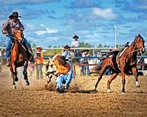 Steer Wrestler - Bowen River Rodeo