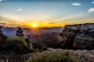 Grand Canyon Suns...