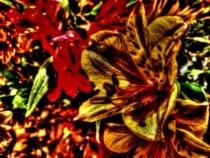 Flower-Option 2