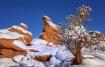 Rocky Mountain Mo...