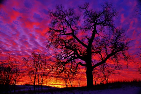 Wild Wisconsin Sunset