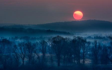 A Trexler Sunset Revisited