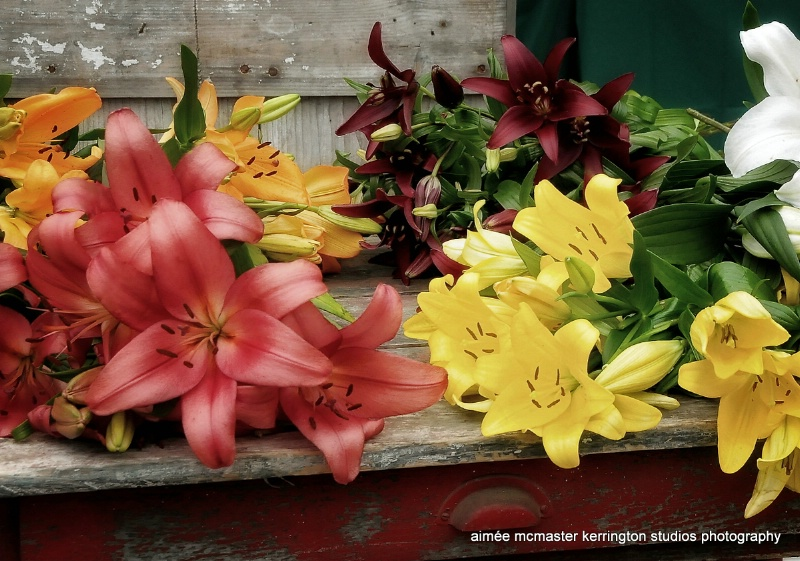 lily bunches