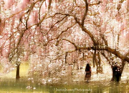 Magnolia Impressions