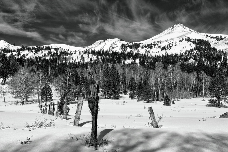 High Country - ID: 14430719 © Steve Abbett