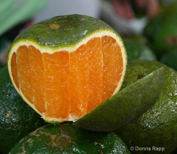 green orange-sm - ID: 14432122 © Donna Rapp
