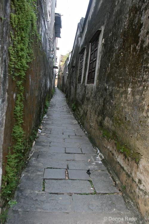 narrow alleyway - ID: 14432136 © Donna Rapp