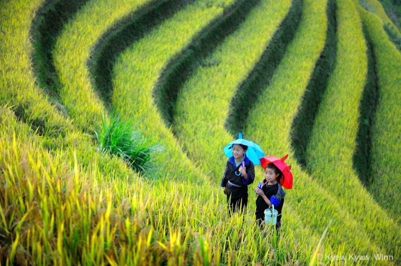 Little Sisters - ID: 14434361 © Kyaw Kyaw Winn