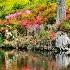 2Middleton Place Gardens - ID: 14446194 © Carol Eade
