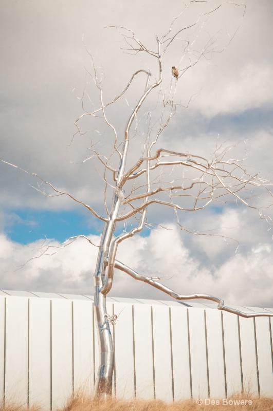 Hawk in a Silver Tree