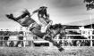 Saddle Bronc Ride...
