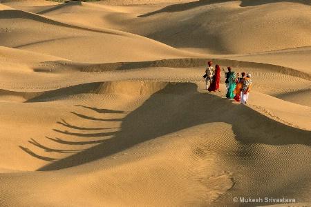 Life At Khuri Sand Dunes.