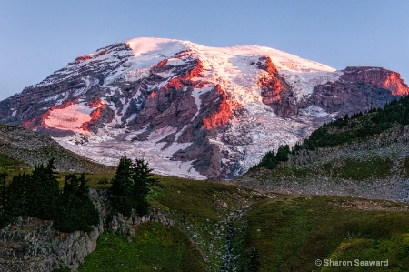 Sunrise Mt Rainier