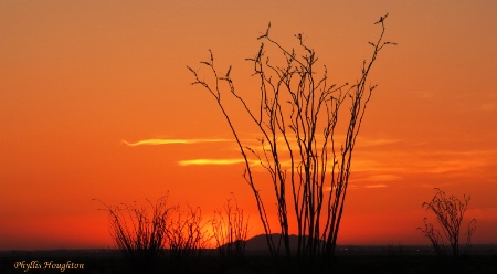 Sunset Over Yuma
