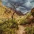 2Inside the Grand Canyon - ID: 14466644 © Fran  Bastress