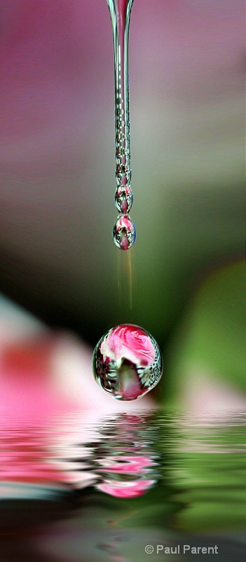 Droplets - ID: 14467671 © paul parent