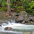 2Cool Spring Creek  - ID: 14475233 © Zelia F. Frick