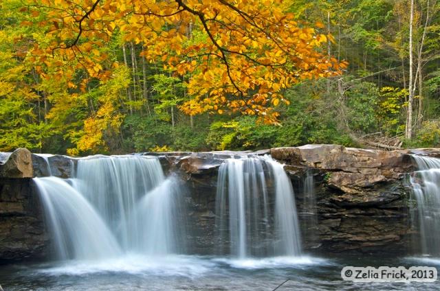 High Falls of Cheat - ID: 14475249 © Zelia F. Frick