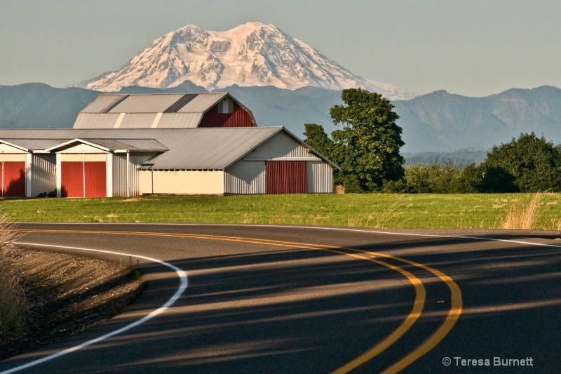 Country Roads - ID: 14475955 © Teresa Burnett